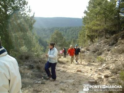 Caminando en las majadas; rutas a pie madrid; cercedilla senderismo